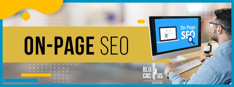 BluCactus - On-Page SEO - title