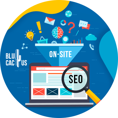 BluCactus - ASO vs SEO - technology with important information