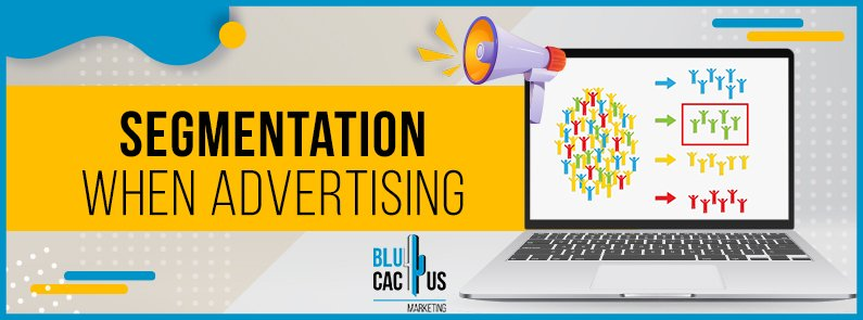 BluCactus -Segmentation when advertising - title