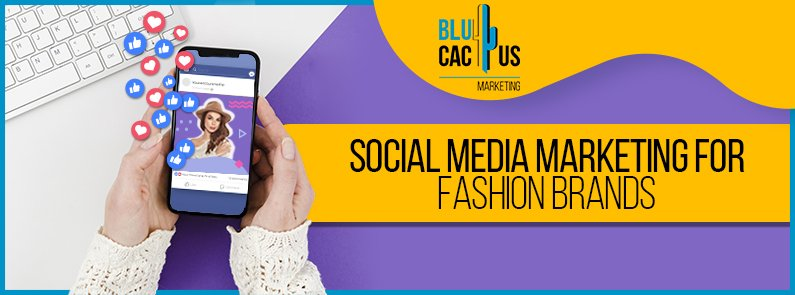 BluCactus - Social media marketing for fashion brands - title