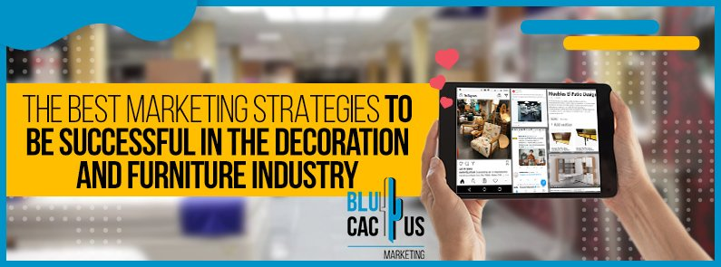 BluCactus - Marketing strategies for the furniture and decoration industry - title