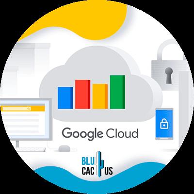 BluCactus - google cloud