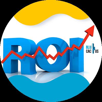 BluCactus -Segmentation when advertising - roi