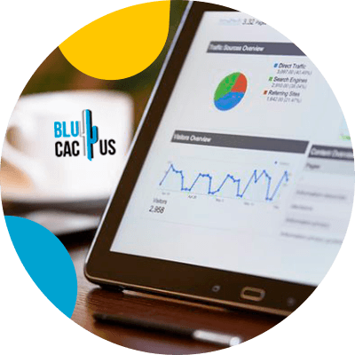 BluCactus -Segmentation when advertising - segmentation