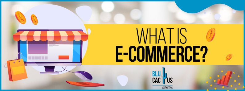 BluCactus - What is e-commerce? - title