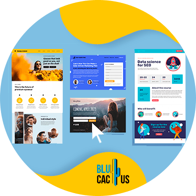 BluCactus - example of landing pages