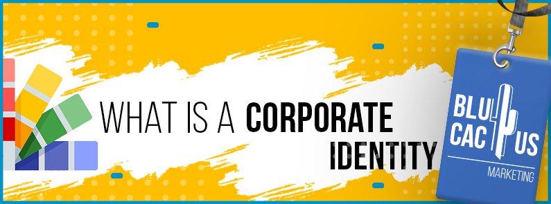 BluCactus - Corporate identity - title