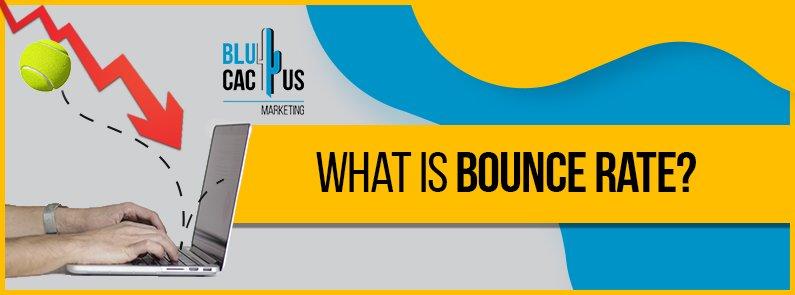 BluCactus - bounce rate - title