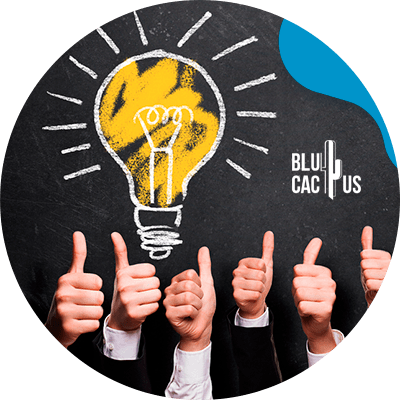 BluCactus - Corporate identity - what is