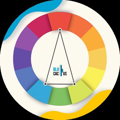 BluCactus - color