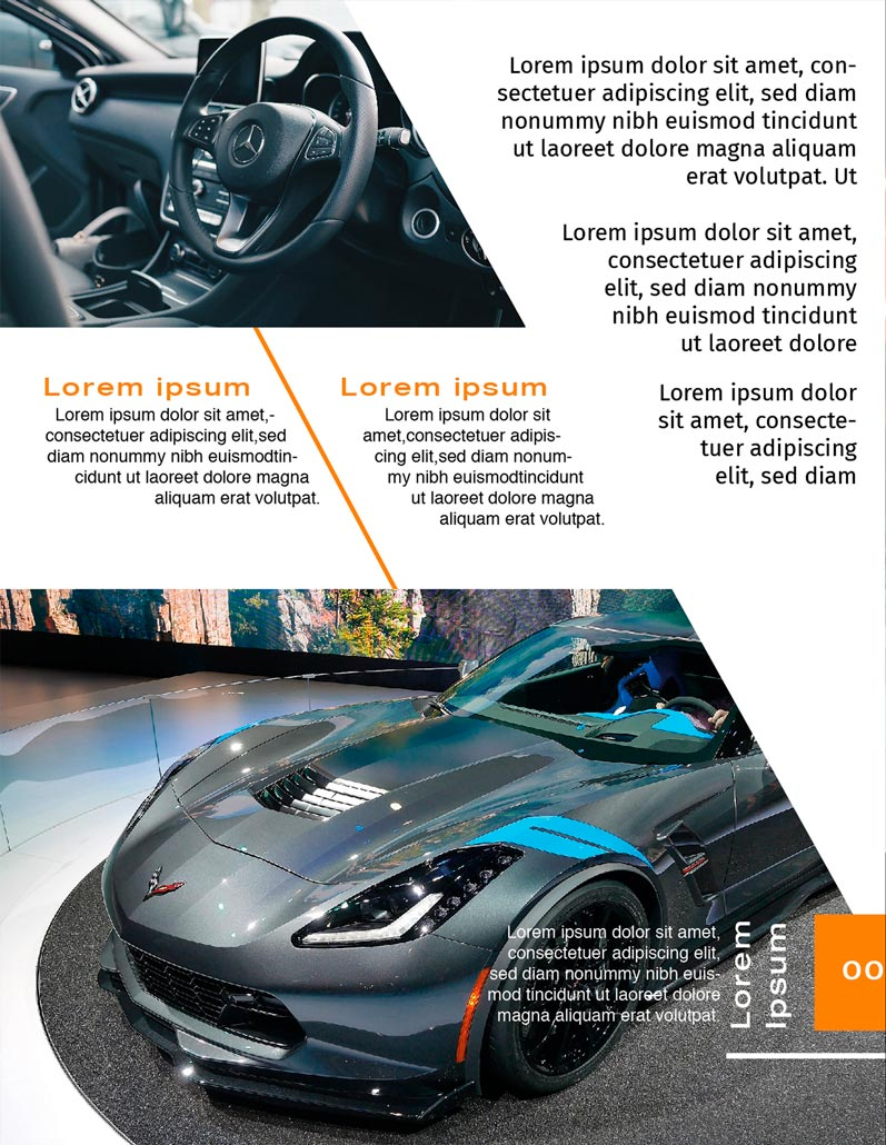 BluCactus - Brochure Bifold Sales Preview Page 2