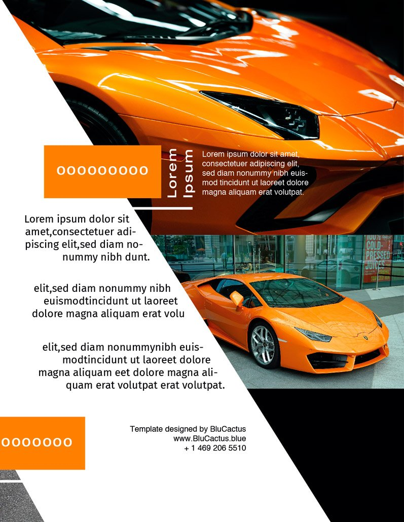 BluCactus - Luxury Automotive Brochure Template Bifold Sales Preview Page 3