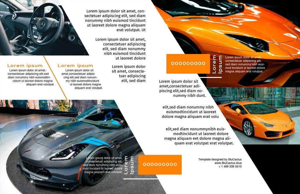 BluCactus - Brochure Bifold Sales Preview Inside