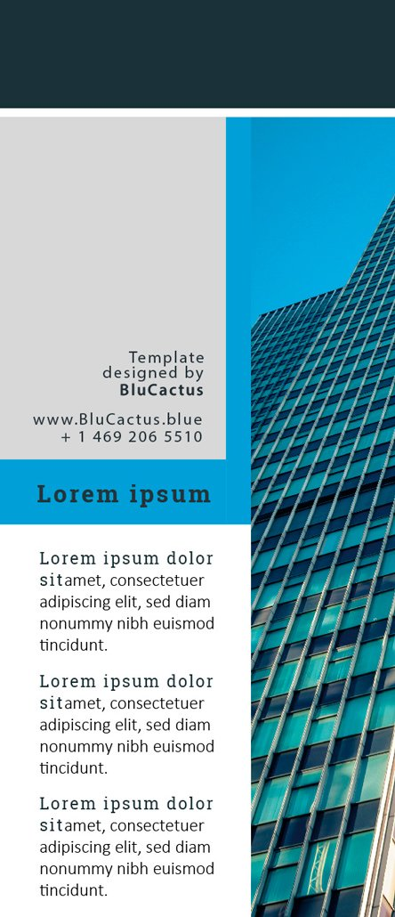 BluCactus Commercial Banking Brochure Template Trifold Preview Back