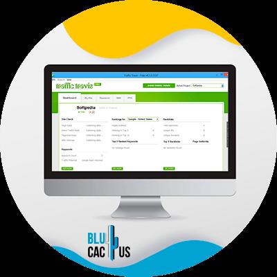 BluCactus - free SEO tools - example of a seo tool