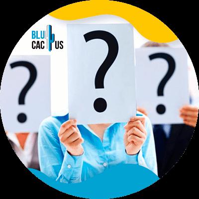BluCactus - questions