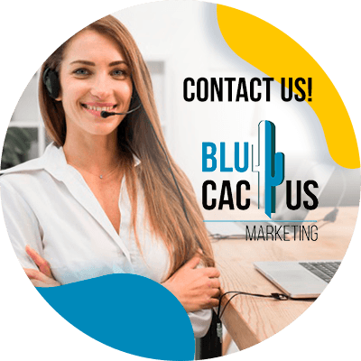BluCactus -what is Moz - contact us