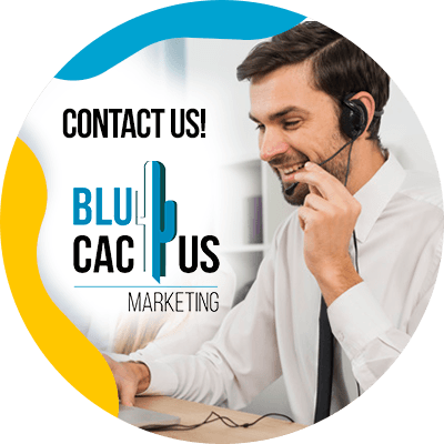 BluCactus - contact us