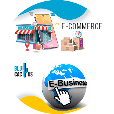 BluCactus - Advantages and disadvantages of an e-commerce - ebusiness