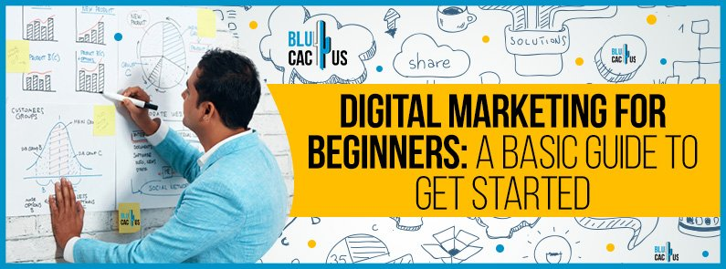 BluCactus -Digital Marketing for Beginners - title
