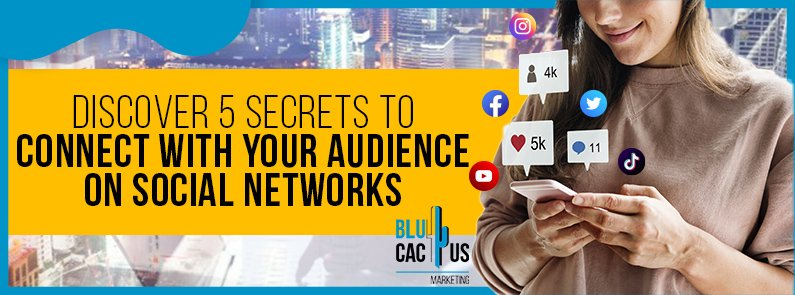 BluCactus - connect with your audience - title