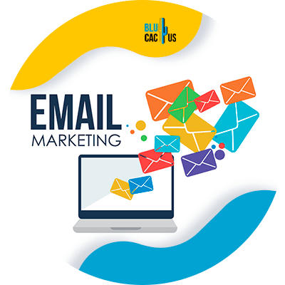 BluCactus -Digital Marketing for Beginners - email marketing