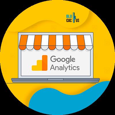 BluCactus -Digital Marketing for Beginners - google analyticd