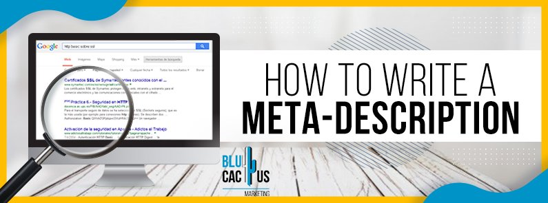 BluCactus -How to write a meta-description - title