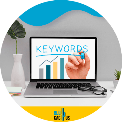 BluCactus - SEO statistics for the 2021 - coputer with important data
