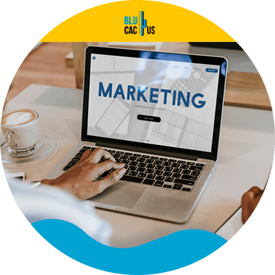 BluCactus -Digital Marketing for Beginners - person with a computer