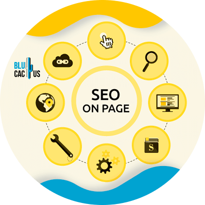 BluCactus - seo on page