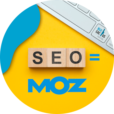 BluCactus -what is Moz - seo