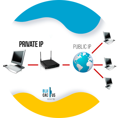 BluCactus - Private ip