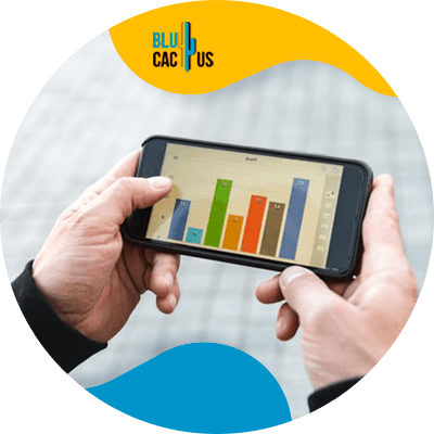 BluCactus - SEO statistics for the 2021 - cellphone with important data