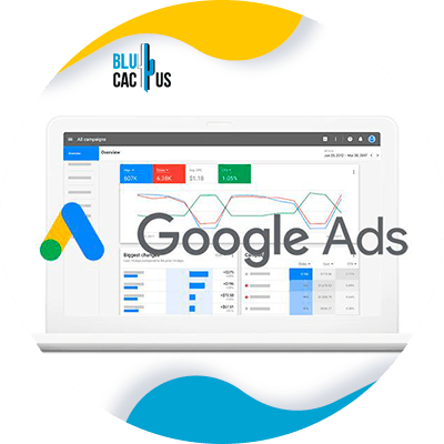 BluCactus - Digital Marketing Strategies for Lawyers - google ads