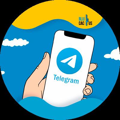 BluCactus - telegram