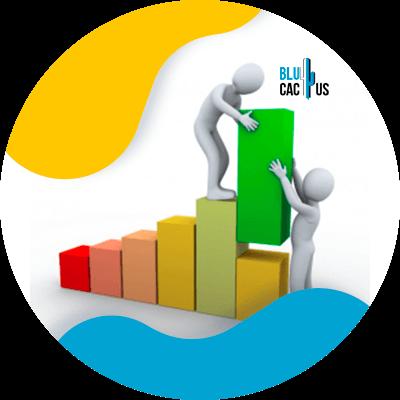 BluCactus - data