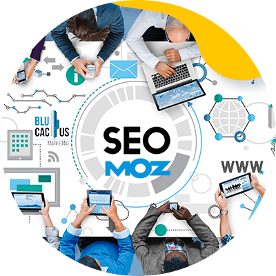 BluCactus -what is Moz -seo