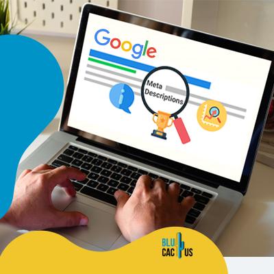 BluCactus -How to write a meta-description - data information
