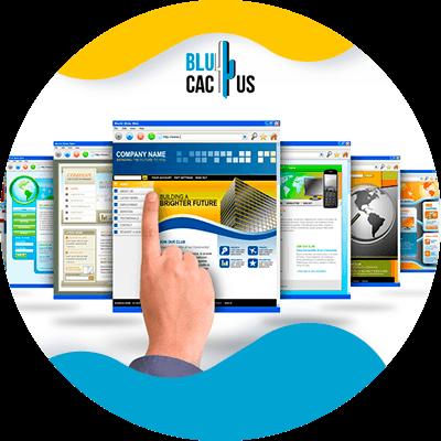 BluCactus - web pages
