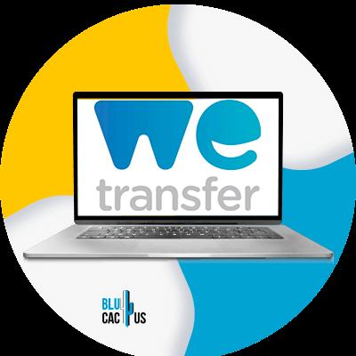 BluCactus - we transfer