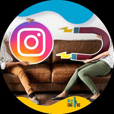 BluCactus - social medi