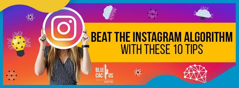 BluCactus - Instagram's Algorithms - title