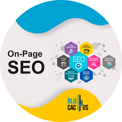 BluCactus - SEO On Page 2021 Checklist - technology with important information
