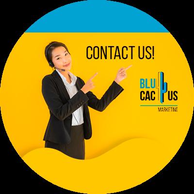 BluCactus - Digital fashion catwalks - contact us