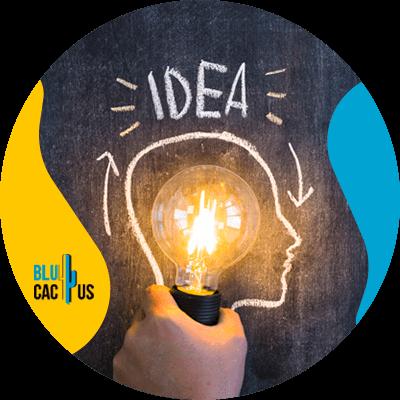 BluCactus - ideas