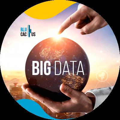 BluCactus - big data