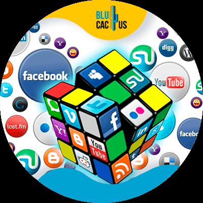 BluCactus - social network