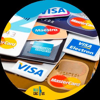 BluCactus - visa