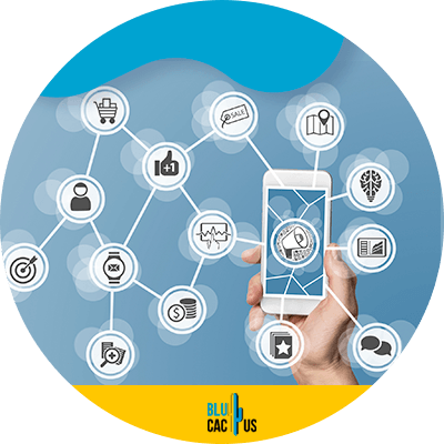 BluCactus - Marketing trends for insurance companies - cellphone with important information